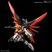 1144 HGCE DESTINY GUNDAM (HEINE USE)